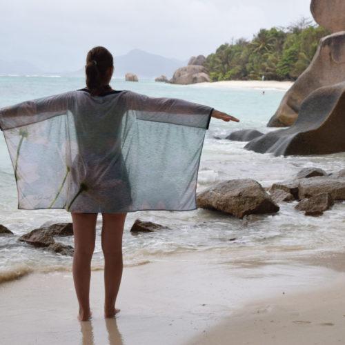 Seychelles-Ile La Digue - Anse Source d'Argent (5)