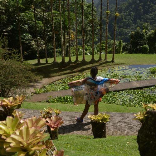 Balata parc naturel régional Martinique 1